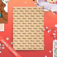 Studio Draak surprise pack 10 kerstkaarten